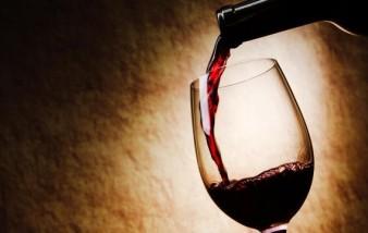 Top vin, j'ai découvert le meilleur des vins