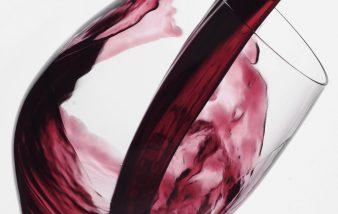 Les vins de Saint Julien n'auront plus de secret pour vous