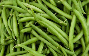 Comment cuisiner des haricots verts ?